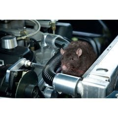 Under Hood Animal Repeller
